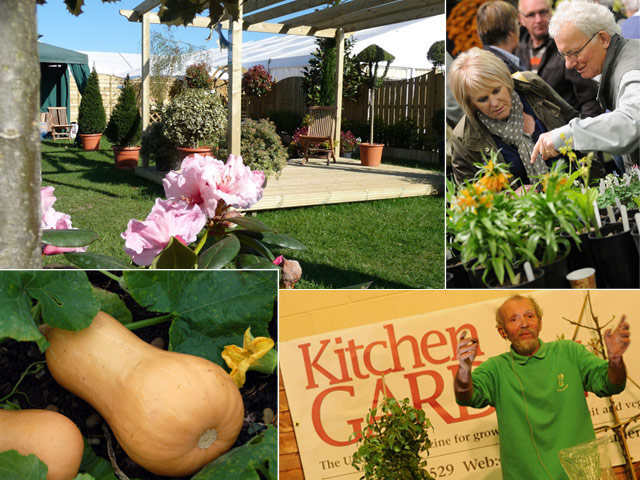Scenes from the Harrogate Flower Show