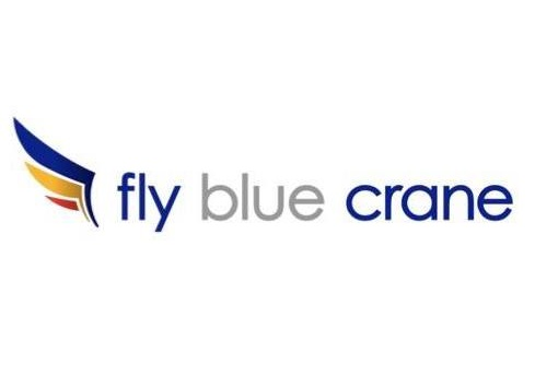 The logo for Fly Blue Crane Airlines