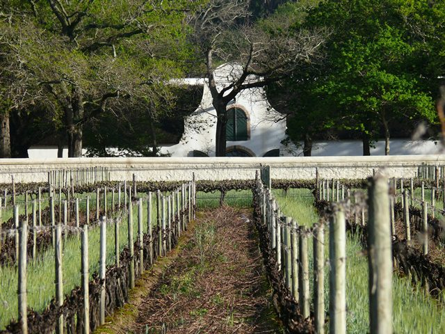 Groot Constantia Winery on the Constantia Wine Route