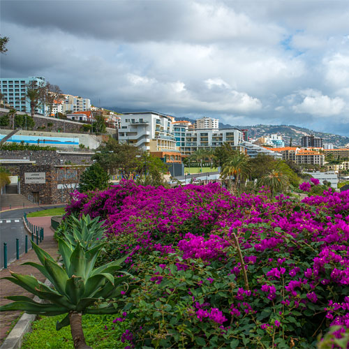 Book cheap flights to Funchal, Portugal