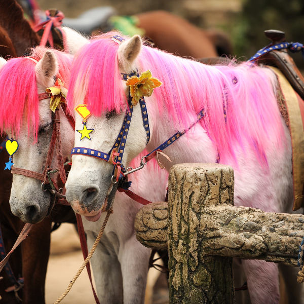 white pony pink hair
